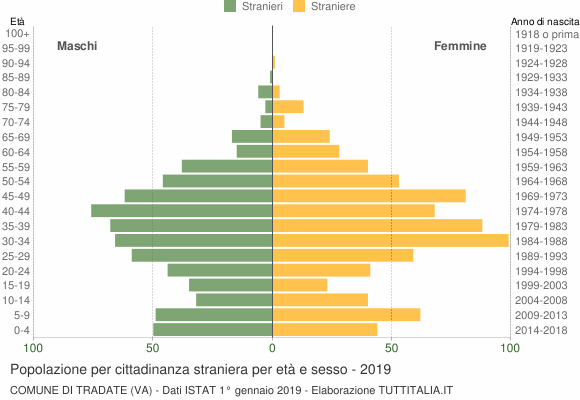 Grafico cittadini stranieri - Tradate 2019