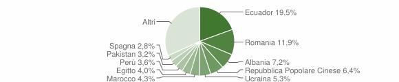 Grafico cittadinanza stranieri - Villasanta 2018