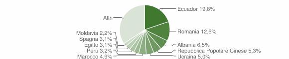 Grafico cittadinanza stranieri - Villasanta 2019
