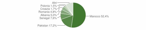 Grafico cittadinanza stranieri - Odolo 2010