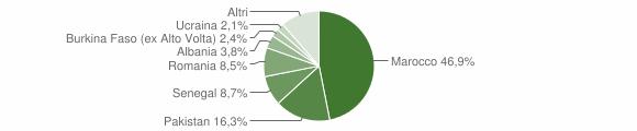 Grafico cittadinanza stranieri - Odolo 2014