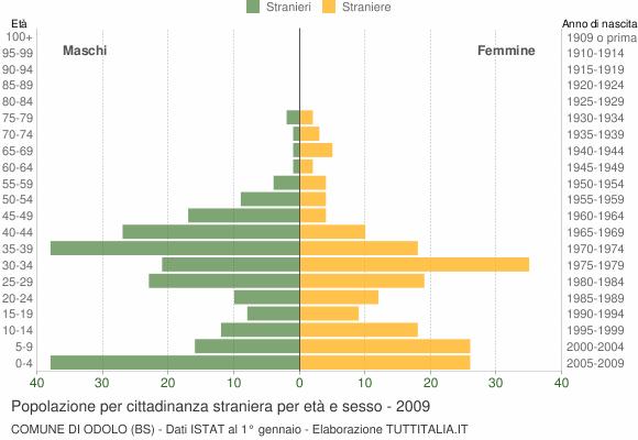 Grafico cittadini stranieri - Odolo 2009
