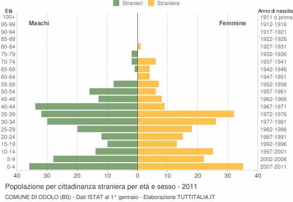 Grafico cittadini stranieri - Odolo 2011