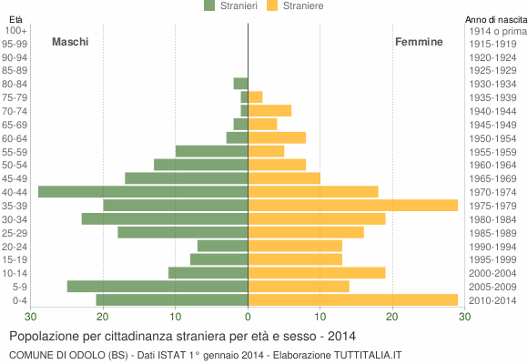 Grafico cittadini stranieri - Odolo 2014