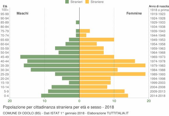 Grafico cittadini stranieri - Odolo 2018