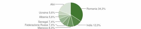 Grafico cittadinanza stranieri - Pinarolo Po 2019