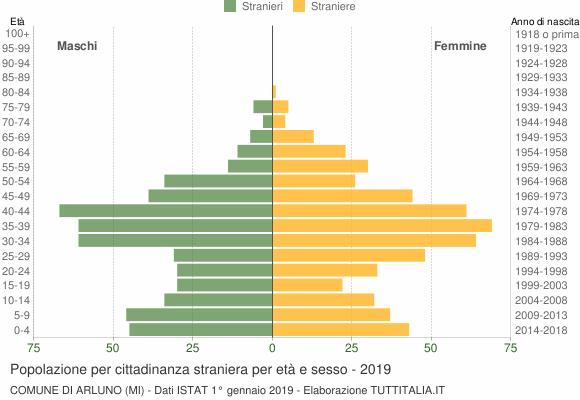 Grafico cittadini stranieri - Arluno 2019