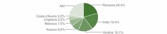Grafico cittadinanza stranieri - Monasterolo del Castello 2019