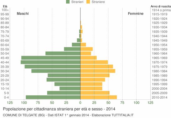 Grafico cittadini stranieri - Telgate 2014