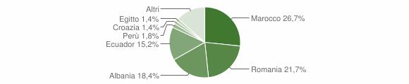 Grafico cittadinanza stranieri - Ornago 2010
