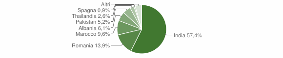 Grafico cittadinanza stranieri - Pieve d'Olmi 2019