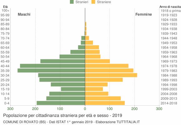 Grafico cittadini stranieri - Rovato 2019