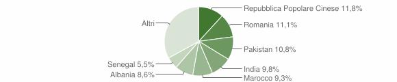 Grafico cittadinanza stranieri - Capriano del Colle 2010
