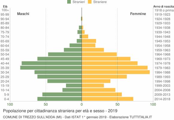 Grafico cittadini stranieri - Trezzo sull'Adda 2019
