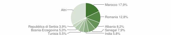 Grafico cittadinanza stranieri - Erbusco 2009