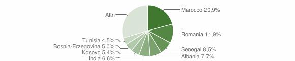 Grafico cittadinanza stranieri - Erbusco 2010
