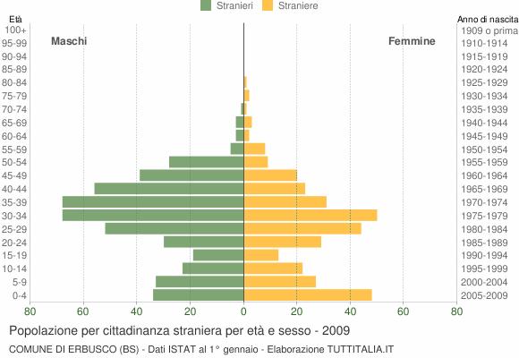 Grafico cittadini stranieri - Erbusco 2009