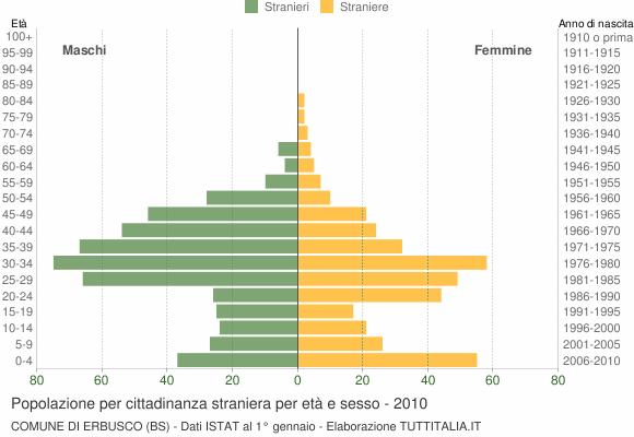 Grafico cittadini stranieri - Erbusco 2010