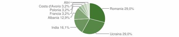Grafico cittadinanza stranieri - Pizzale 2019