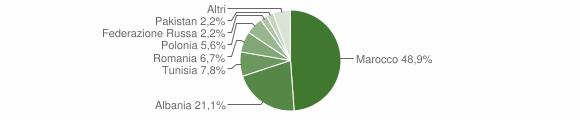 Grafico cittadinanza stranieri - Capo di Ponte 2005