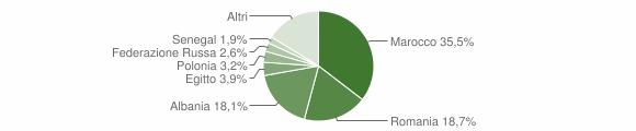 Grafico cittadinanza stranieri - Capo di Ponte 2013