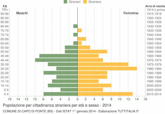 Grafico cittadini stranieri - Capo di Ponte 2014