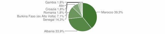 Grafico cittadinanza stranieri - Lavenone 2008