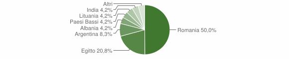 Grafico cittadinanza stranieri - Pancarana 2019