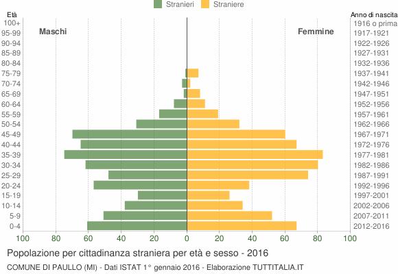 Grafico cittadini stranieri - Paullo 2016