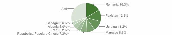 Grafico cittadinanza stranieri - Seregno 2019