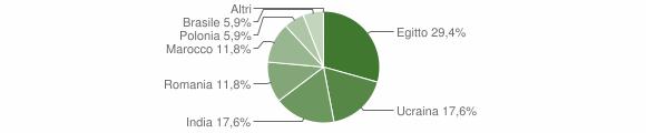 Grafico cittadinanza stranieri - Cerveno 2013