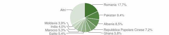 Grafico cittadinanza stranieri - Rezzato 2010