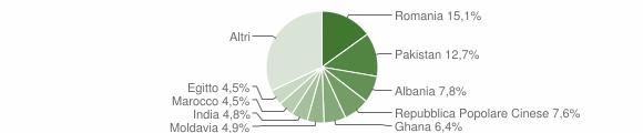 Grafico cittadinanza stranieri - Rezzato 2013