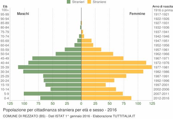 Grafico cittadini stranieri - Rezzato 2016
