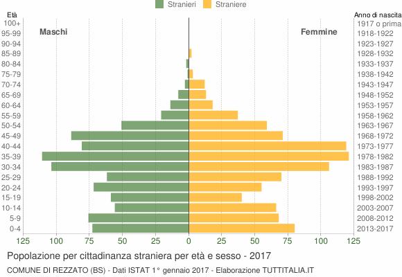 Grafico cittadini stranieri - Rezzato 2017