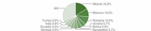 Grafico cittadinanza stranieri - Treviolo 2010