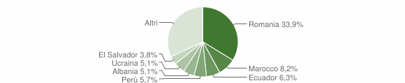 Grafico cittadinanza stranieri - Basiano 2019