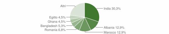 Grafico cittadinanza stranieri - Castelnuovo Bocca d'Adda 2011