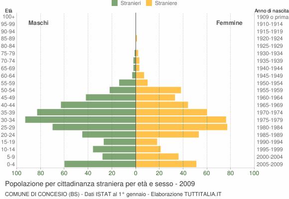 Grafico cittadini stranieri - Concesio 2009