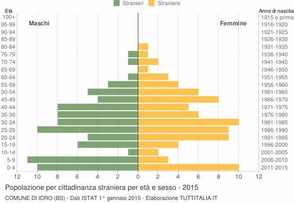 Grafico cittadini stranieri - Idro 2015