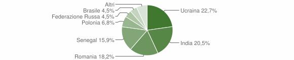 Grafico cittadinanza stranieri - Berzo Demo 2012