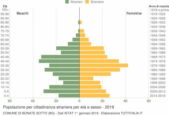 Grafico cittadini stranieri - Bonate Sotto 2019