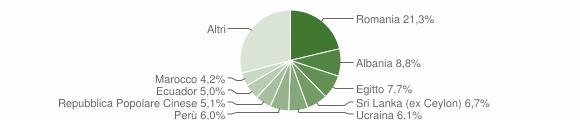 Grafico cittadinanza stranieri - Brugherio 2019