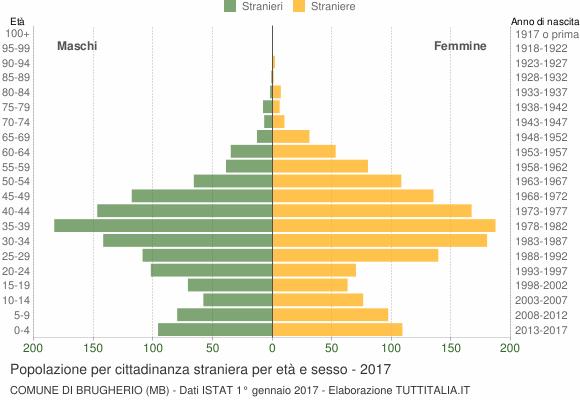 Grafico cittadini stranieri - Brugherio 2017