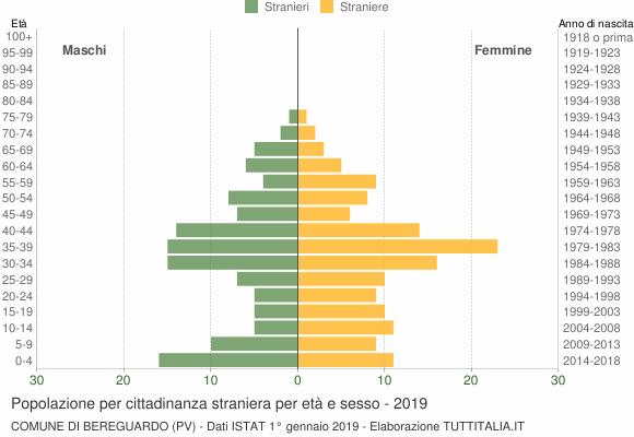 Grafico cittadini stranieri - Bereguardo 2019