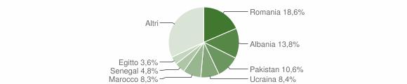 Grafico cittadinanza stranieri - Mariano Comense 2019