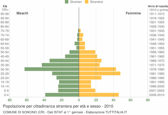 Grafico cittadini stranieri - Soncino 2010