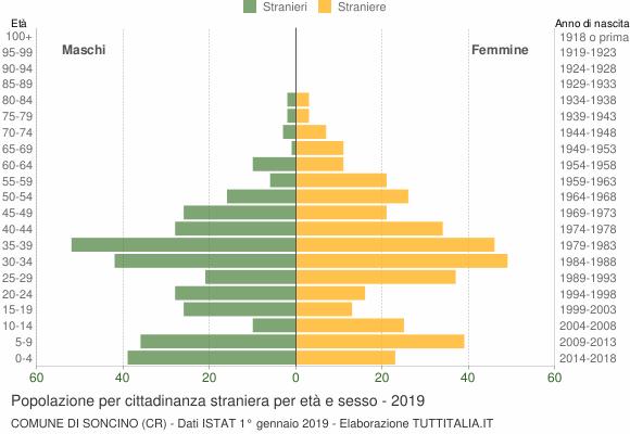 Grafico cittadini stranieri - Soncino 2019