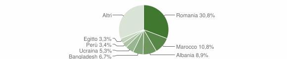 Grafico cittadinanza stranieri - Usmate Velate 2019