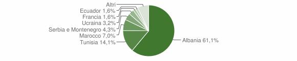 Grafico cittadinanza stranieri - Bienno 2004